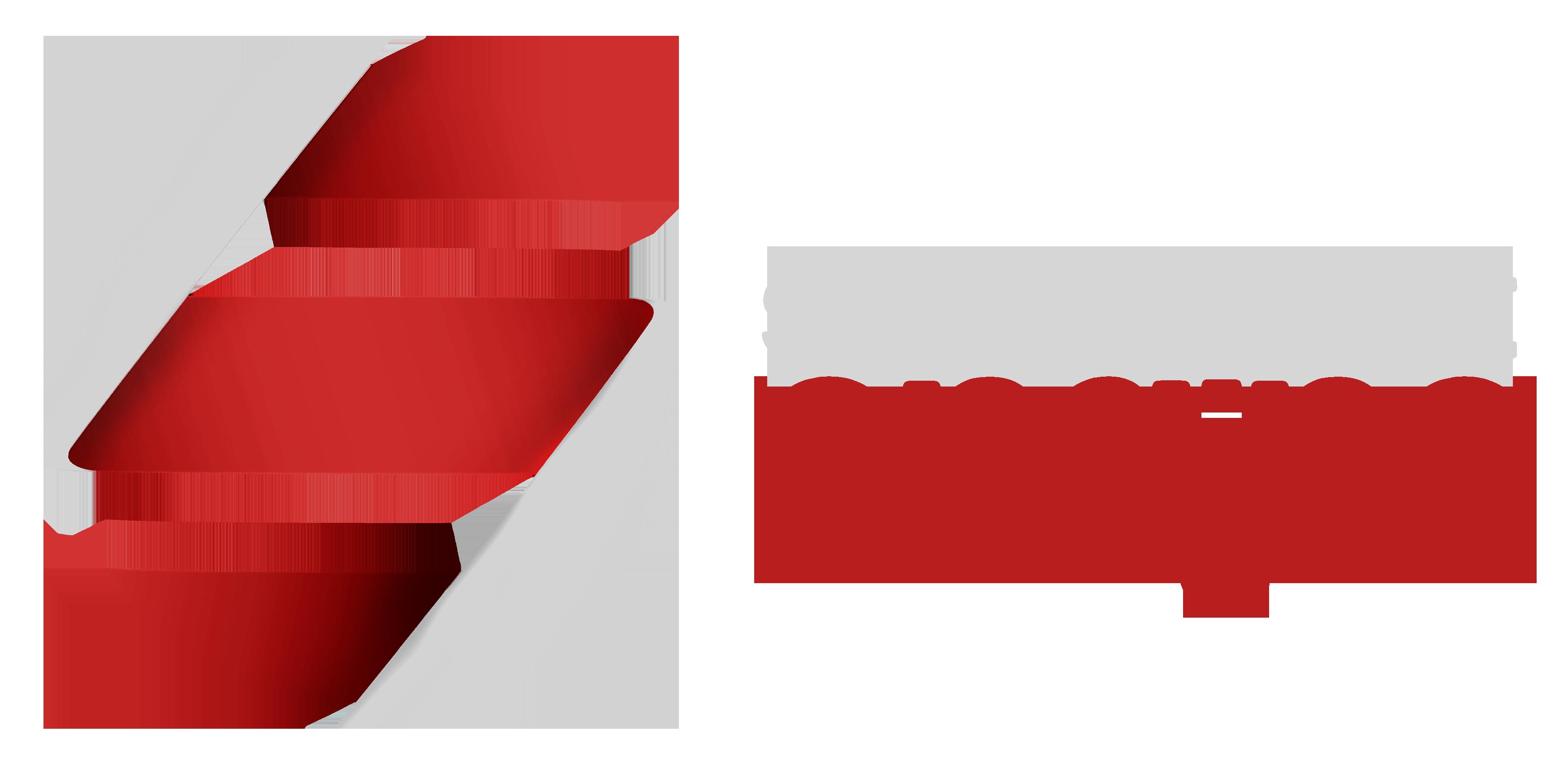 scripting logo2